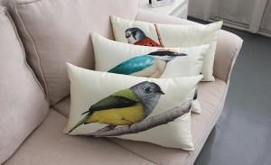 cojines pájaros