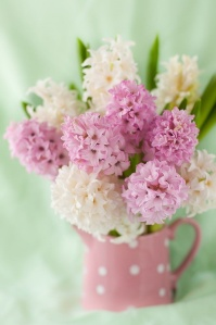 deco flor jacinto rosa