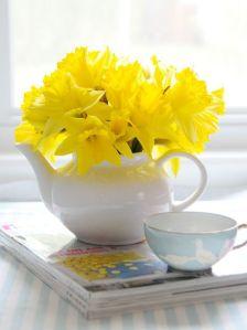deco flor narcisos 2