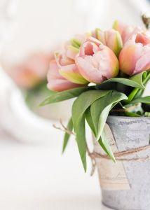 deco flor tulipan 4