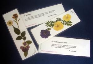 flores secas marcapáginas web 3