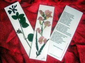 flores secas marcapáginas web 6