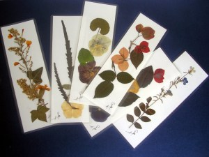 flores secas marcapáginas web