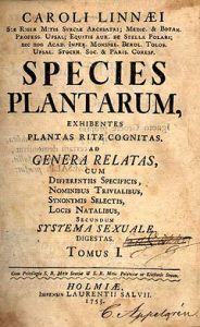 herbario linneo 2
