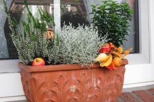 jardineras 2