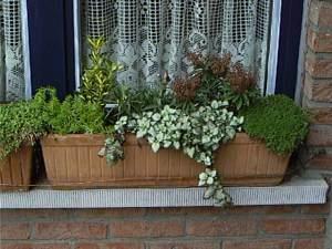 jardineras 3