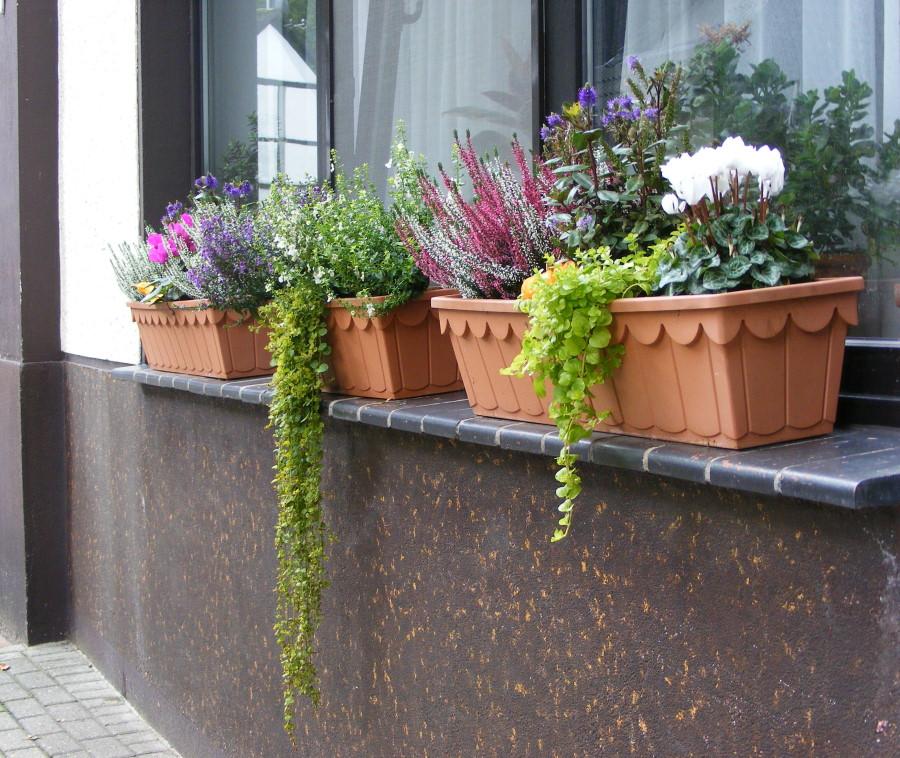 Jardineras esas imprescindibles que alegran nuestros for Jardineras para balcones
