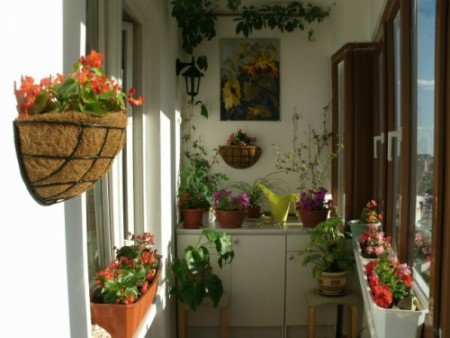 jardineras y macetas jardineras y sillas rosas jardineras