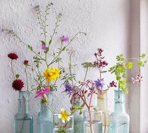 jarrones y flor cortada