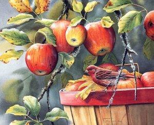 laminas manzana y pájaro