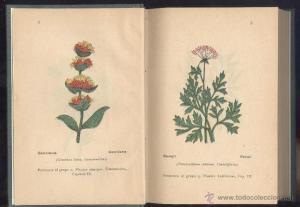 libros plantas antiguos