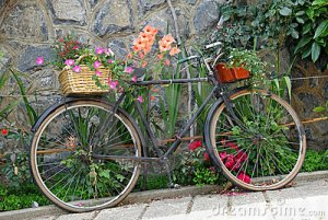 old-bicycle-decorated-flowers-5096905