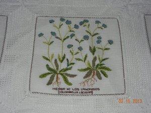plantas punto cruz