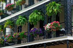 terrazas