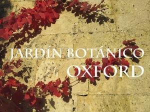 Botánico Oxford