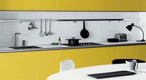 Cambiar-muebles-de-cocina