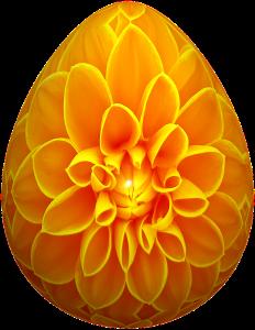 eggs-672457_960_720