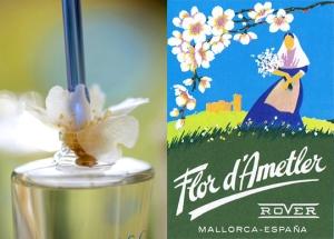 flor-de-almendro-ametler-mallorca-5