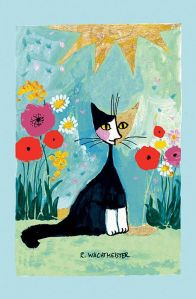 gato rosina 3