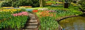 jardín botánico de amsterdam