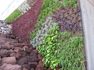 Jardín vertivcal Las Palmas