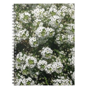 las_pequenas_flores_blancas_lindas_multan_la_foto_libreta_espiral-rad6f5bf31ddc4b4c84c27f9b9bcbcaf6_ambg4_8byvr_324