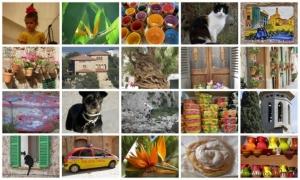 mallorca-snapshots.jpg-nggid0223-ngg0dyn-635x0x100-00f0w011c011r110f110r010t010