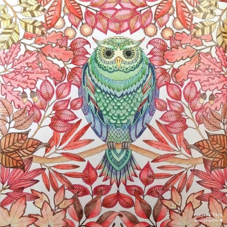 Arteterapia ii relajarse y disfrutar libros de for El jardin secreto johanna basford