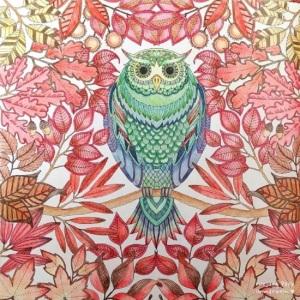 Secret-Garden-un-de-la-tinta-de-búsqueda-del-tesoro-y-libro-para-colorear-hijos-adultos