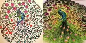 Secretos-jardín-adultos-libro-para-colorear-un-de-la-tinta-de-búsqueda-del-tesoro-aliviar-el