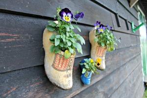 Zuecos-con-flores-en-Holanda