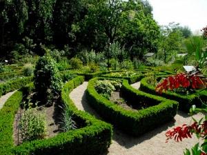 amsterdam-hortus-botanicus