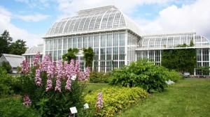 botanico-helsinki-1140x641