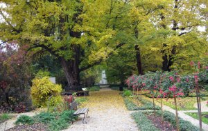 botanico-varsovia