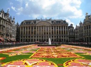 Bruselas flores 4