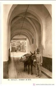 burro leche