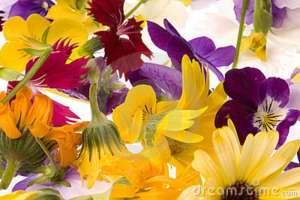 flores comestibles varias