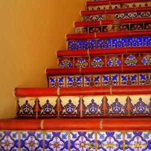 flores-escaleras-6