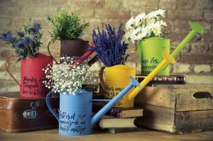 flores-regaderas_ebay-2-_c2101_r875840_ampliacion