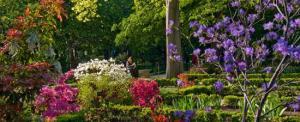 General-jardin-botanico-10-c-Foto-RJB.jpg_369272544