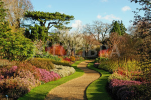 Cambridge Botanic Gardens 2