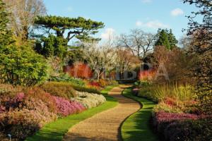 Cambridge Botanic Gardens 2