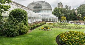 Jardin-Botanico-Belfast