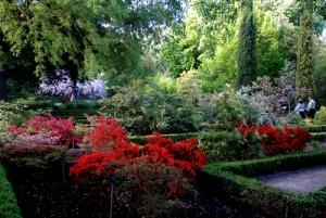 jardin_
