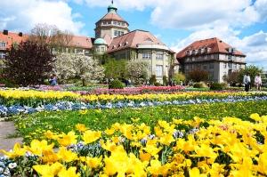 jardin_botanico2