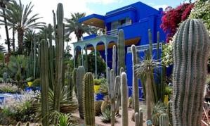 Majorelle-Gardens-Marrake-007