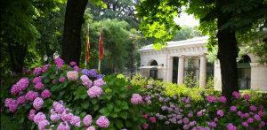 Real-Jardín-Botánico-Entrada-615x303