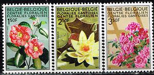 sellos 3