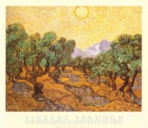 van-gogh-vincent-campo-de-olivos-ca-1889