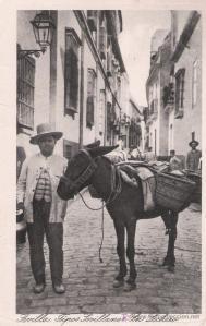 vendedor esparto burro